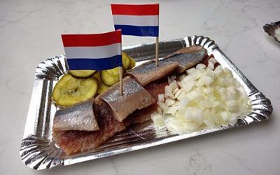 Dutch Herring