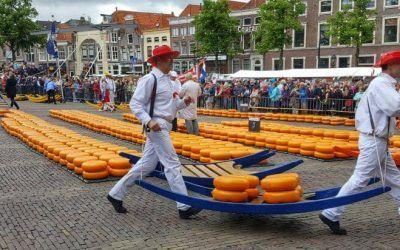 Alkmaar, Cheese and Windmills Tour